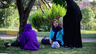 تصویر ترویج حجاب با اهدای گل توسط خانواده «رستگار»