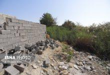 تصویر یادداشت همایون امیرزاده درباره ماجرای تخریب آلونک یک زن در بندرعباس