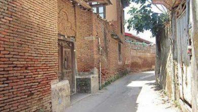 تصویر یوکا! ای جانِ بافتِ تاریخیِ شیراز؛ کجایی؟!