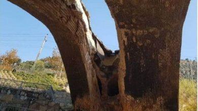 تصویر قدیمیترین سازه کرج فرو ریخت/ پل دختر در مقابل باران دوام نیاورد