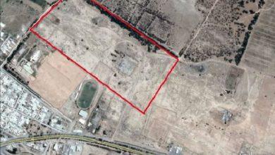 تصویر زمینخوارها به عرصه اصلی محوطه باستانی حمیدیه خوزستان رسیدند