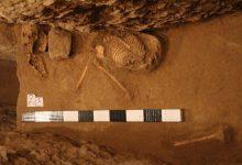 تصویر اسکلتهایی که پژوهشگاه به آزمایشگاه نمیفرستد/وقتی کارد به استخوان یک  باستانشناس رسید