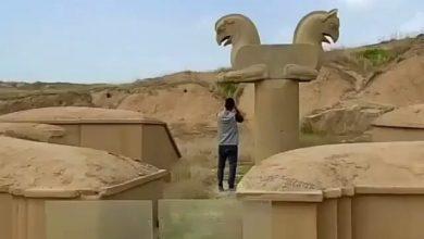 تصویر حرکت نمایشی یک «پارکور» دیگر در میراث جهانی تخت جمشید!