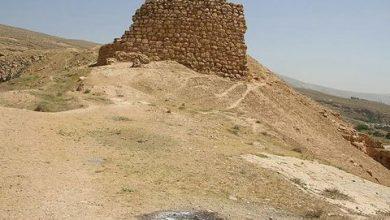 تصویر «آدیداس» سوغات تازه قصر ابونصر شیراز!