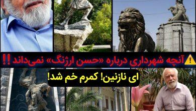 تصویر آنچه شهرداری درباره «حسن ارژنگ» نمیداند/ ای نازنین! کمرم خم شد!